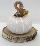 White Pumpkin 110